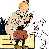 Milou (Les aventures de Tintin)