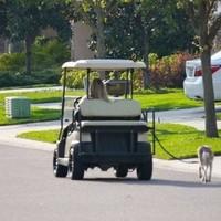 La voiture de golf pour promener le chien