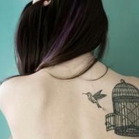 l'oiseau qui sort enfin de sa cage
