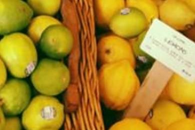 Vous préférez le citron jaune ou le citron vert?