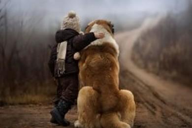 Vous en pensez quoi de cette photo? Vous laisseriez votre bébé avec un si gros chien?