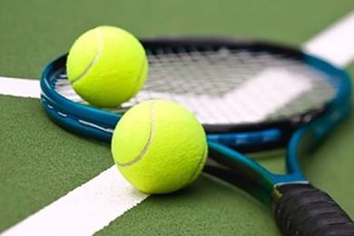 Quel est le meilleur de ces tennismen pour vous?