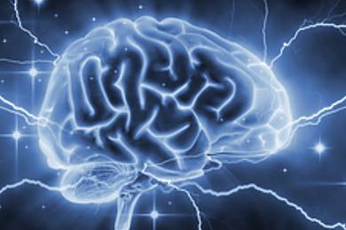 Une récente étude démontre qu'un cerveau peut contrôler un autre cerveau. Vous en pensez quoi?