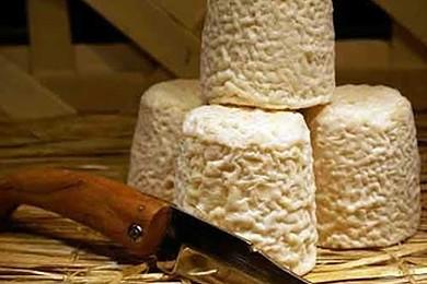 Quel est votre fromage favori?