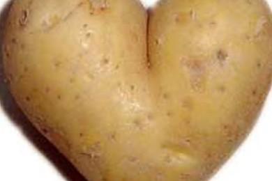 Comment préférez-vous manger les pommes de terre?
