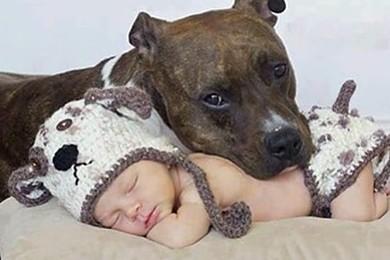 Qual è la foto più dolce?