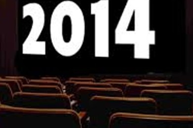 Giudichi positiva o negativa l'annata cinematografica e la qualità dei film 2014?