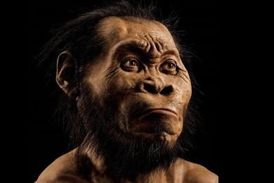 """Scoperta una nuova specie umana! """"Homo naledi""""..."""