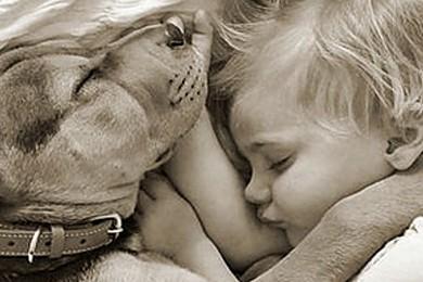 Cani e bambini: qual è la razza più adatta?