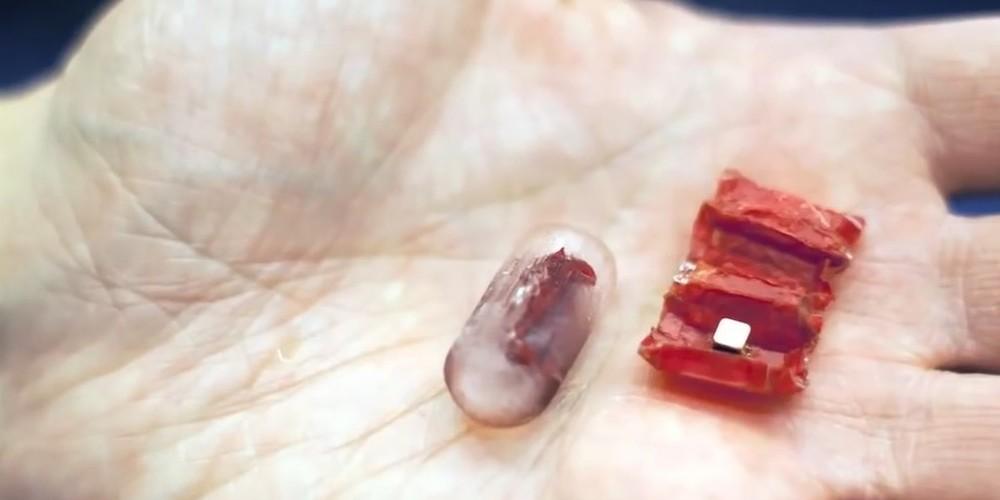 Il micro robot che entra nel tuo corpo e ti guarisce
