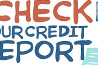 What gets detailed in a credit report?
