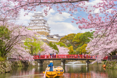 What are the best sites to see in Japan?