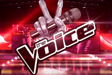 Former obese rocker morphs into Brad-Pitt-alike on The Voice
