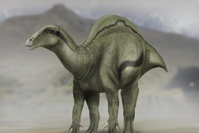 Shocking: new species of dinosaur discovered in the northeast of Spain