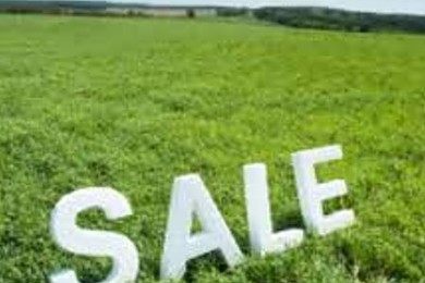 If you bought land for sale, what would you build on it?