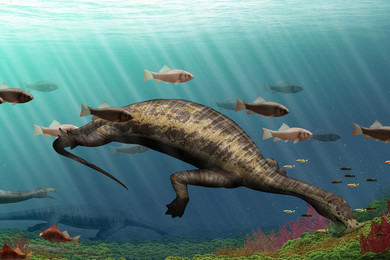 Was this Hammerhead Herbivore the Ocean' First Vegetarian Reptile?