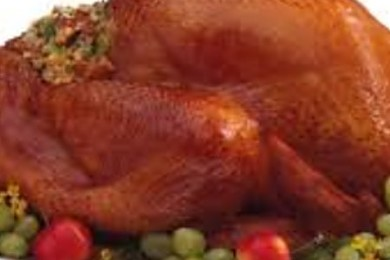 There should be one more bird option besides Turkey as the official thanksgiving staple