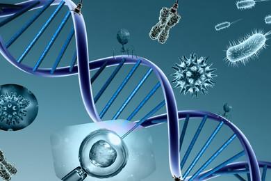 European ancient genomic bone game